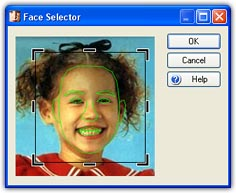 Face Selector Window