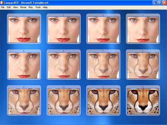 Download Free Skins - Image Morphing Software for Creation of ...