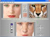 """MAC"" skin of the skinable morphing software"