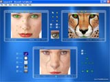"""Blue"" skin of the skinable morphing software"